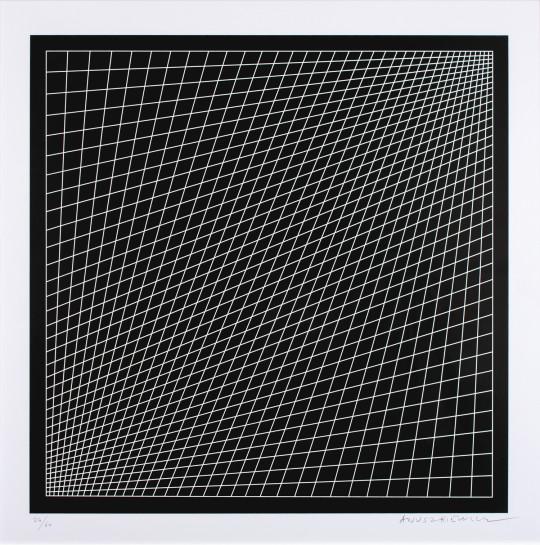 Richard AnuszkiewiczConvex-concave